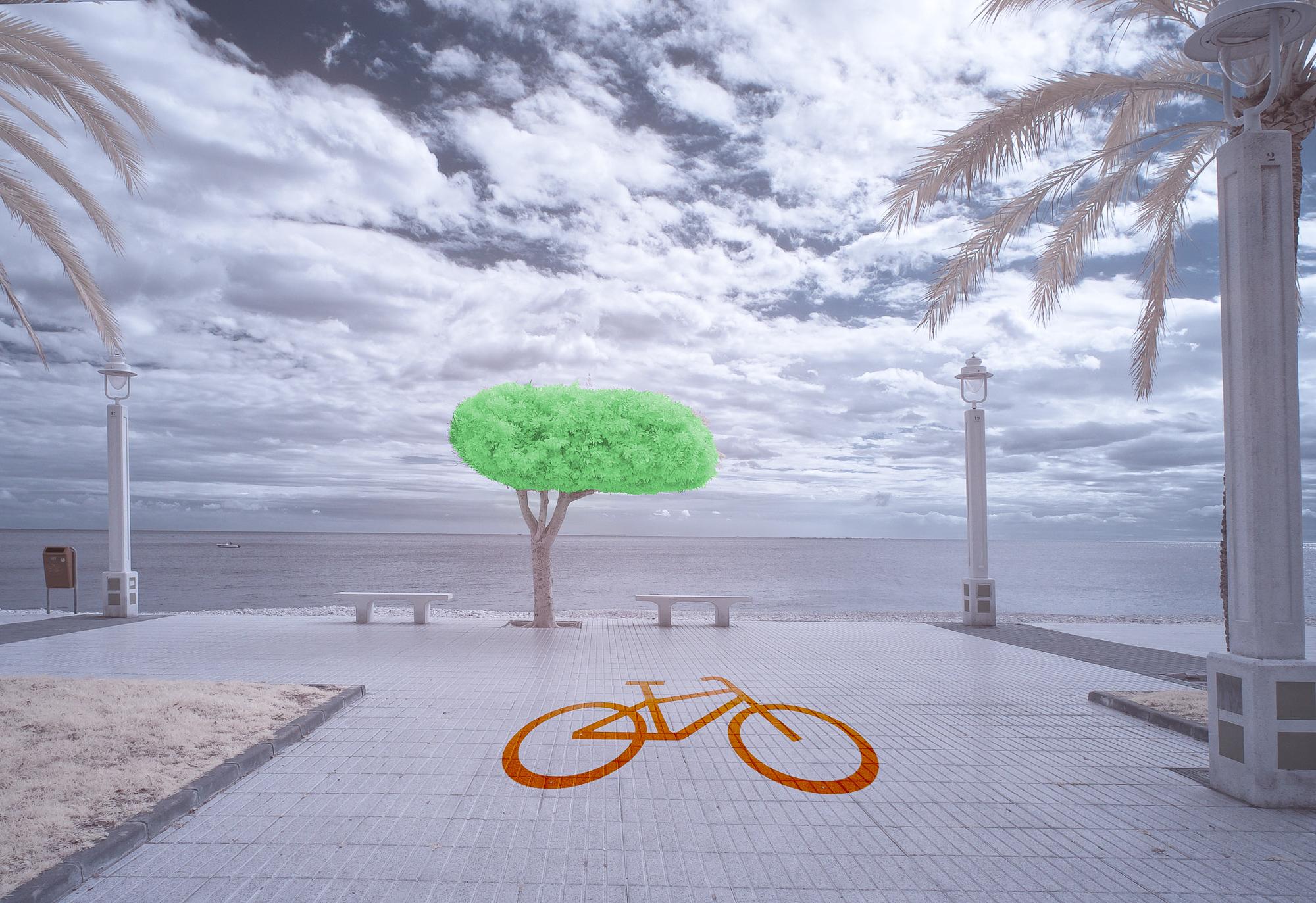 "Leif Eliasson. 1:a - Digitalcup 1 ""Cykel"""
