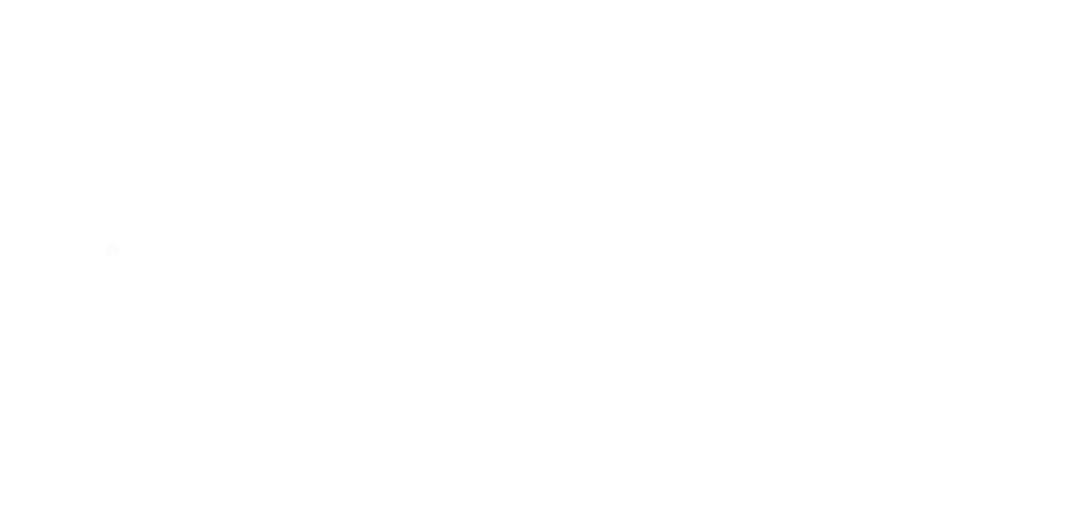 VFK Logo- VIT2