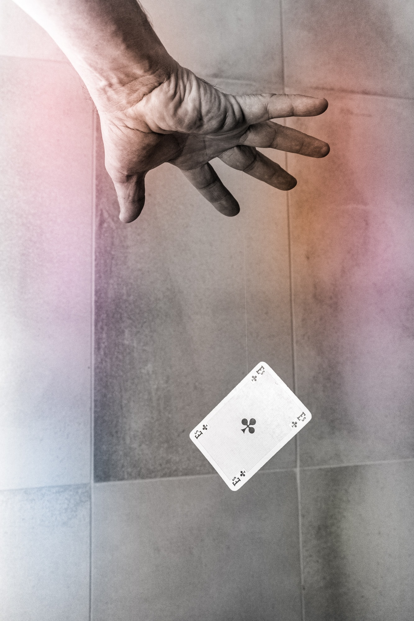 """""""LeviOsa"""" av Åsa Molander. 2:a - Digitalcup 1 """"Kort"""", 2021"""