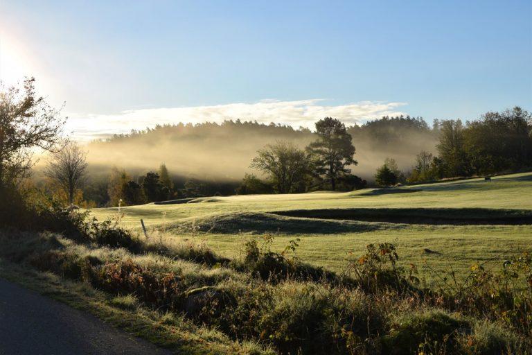 """""""Disig morgon"""" av Birgitta Ivarsson - Visning - Klass E - Kollektion färg/svartvit - Västsvenska FotoExpon 2021"""